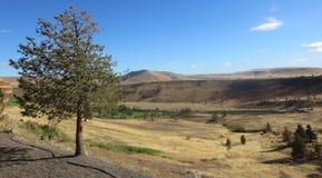 Kah - Nee- Ta Reserve Oregon Hills Royalty Free Stock Photos