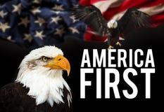Kahler Adler mit amerikanischer Flagge Lizenzfreie Stockbilder
