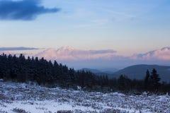 Kahler asten paisaje del invierno en Alemania Foto de archivo libre de regalías