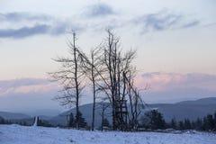 Kahler asten paisaje del invierno en Alemania Imagen de archivo