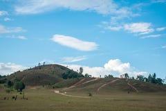 Kahler Berg, Gras-Berg, Gras-Berg wird Khao Hua genannt Stockbilder