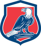 Kahler Eagle Perching Shield Retro Stockbild