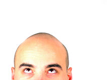 Kahler Kopf, der oben schaut Lizenzfreie Stockfotos