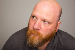 Kahler Mann mit dem Bart, der oben schaut Stockbild