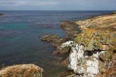 Kahlere Insel Stockbild