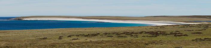 Kahlere Insel - Falkland Islands Lizenzfreie Stockbilder