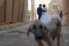 Kahramanmaras,土耳其6月19日2018年:新娘和新郎背面图  免版税库存照片