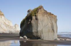 Kai Iwi Beach Wanganui Arkivfoto