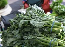 Kai-lan, Gai-lan, Chinese broccoli Stock Photo