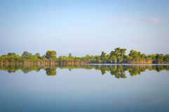 Kaiafas lake, western peloponnese - Greece. View of plants and trees at the shores of Kaiafas lake at western peloponnese - Greece royalty free stock photo