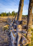 Kaibab corral. Old corral in the Kaibab National Forest near Williams, Arizona, USA. Taken at sunset with sun low behind Stock Image