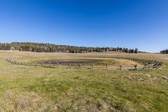 Kaibab Plateau Scenic Landscape Stock Image