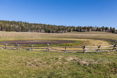 Kaibab Plateau Scenic. The scenic landscape on the kaibab plateau in northern Arizona Stock Photos