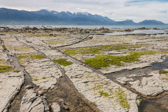 Kaikoura coast at low tide Royalty Free Stock Image
