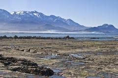 Kaikoura kust med en sikt av bergen Royaltyfri Bild