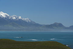 Kaikoura. New Zealand Royalty Free Stock Image