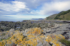 Kaikoura, New Zealand Stock Photo