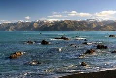 Kaikoura, Nieuw Zeeland Stock Fotografie