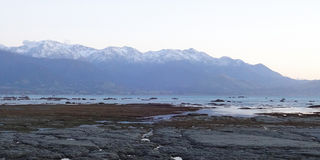 Kaikoura Range Above Ocean Royalty Free Stock Photo