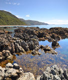 Kaikoura Rock Pool Vertical Panorama, New Zealand Stock Image