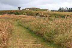 Kaikoura, Schiereilandgang, Nieuw Zeeland Royalty-vrije Stock Foto