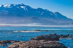 Kaikourakust met een mening van de bergen Royalty-vrije Stock Foto