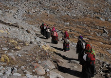 Kailash. Pilgrims  on  the  way around the  sacred mountain。They are tied,hungary but delighted Stock Photos