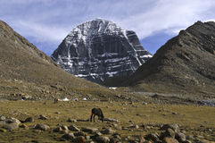 Kailash view Royalty Free Stock Photography
