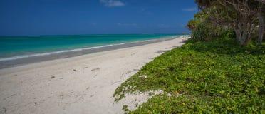 Kailua海滩奥阿胡岛夏威夷 免版税图库摄影