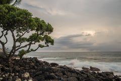 Kailua Kona, Hawaï Royalty-vrije Stock Fotografie