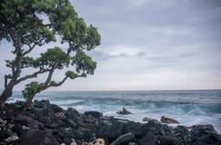 Kailua Kona, Hawaï Stock Fotografie