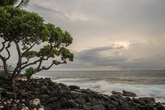 Kailua Kona, Hawaii Royalty Free Stock Photography