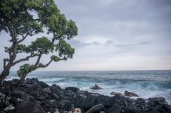 Kailua Kona, Hawaii Stock Photography
