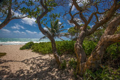 Kailua plaża Hawaje Fotografia Stock
