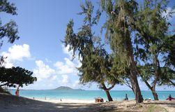 Kailua strand Royaltyfri Fotografi