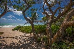 Kailua strand Hawaii Arkivbild