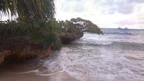 Kailua strand Oahu Hawaii Fotografering för Bildbyråer