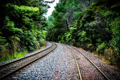 Kaimai tracks Royalty Free Stock Photos