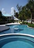 Kaiman-Pool Stockfoto