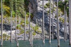 湖Kaindy 图库摄影