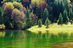 Kaindy green Lake in Tien Shan mountain, Kazakhstan. Autumn Stock Photography