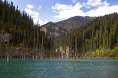 Kaindy halny jezioro w Kazachstan Zdjęcia Royalty Free