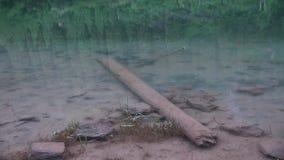 Kaindy jezioro w Kazachstan znać także jako brzozy Drzewo jezioro lub Podwodny las zbiory