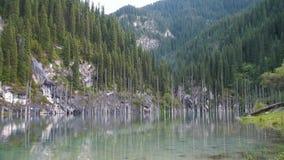 Kaindy jezioro w Kazachstan znać także jako brzozy Drzewo jezioro lub Podwodny las zdjęcie wideo