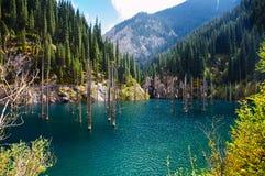 Kaindy Lake in Tien Shan mountain Stock Image