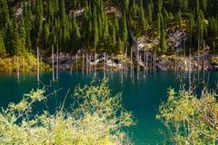 Kaindy Lake in Tien Shan mountain Royalty Free Stock Photos