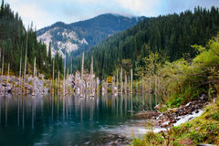 Kaindy Lake in Tien Shan mountain Royalty Free Stock Photo