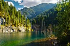 Kaindy Lake in Tien Shan mountain, Kazakhstan. Stock Photo
