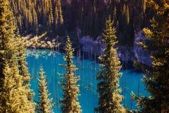 Kaindy Lake in Tien Shan mountain, Kazakhstan Royalty Free Stock Image