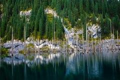 Kaindy Lake in Tien Shan mountain Stock Images